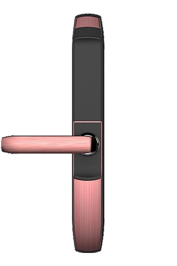 Khóa vân tay cửa gỗ EUROLOCK EL6800-AG